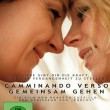 """Camminando Verso – Walking Towards"" on DVD"